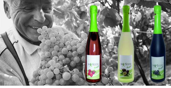 Saxeco_fruit_meissen_alle_drei_flaschen